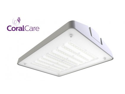 philips coralcare grey 1