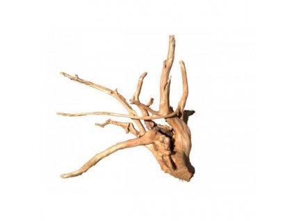 Koreň Finger Wood - veľký