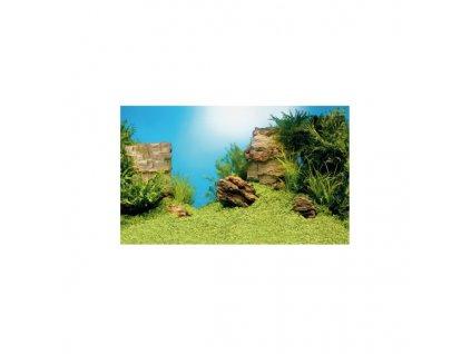 Juwel tapeta Plant/ Reef (XL)