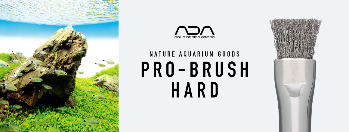 Nový model kartáče ADA Pro-Brush Hard na přisedlé řasys kovovými štětinami