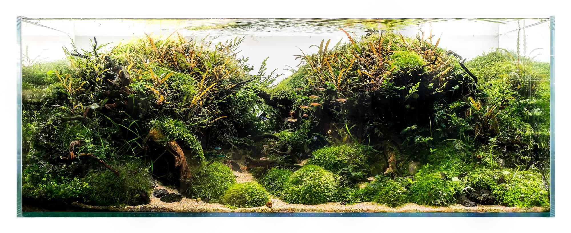 Optiwhite akvárium 120x45x60cm