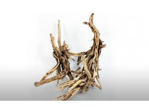 AV Mini root 1