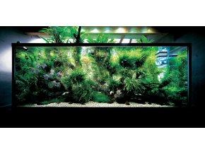 Takashi Amano Home Aquarium ADA
