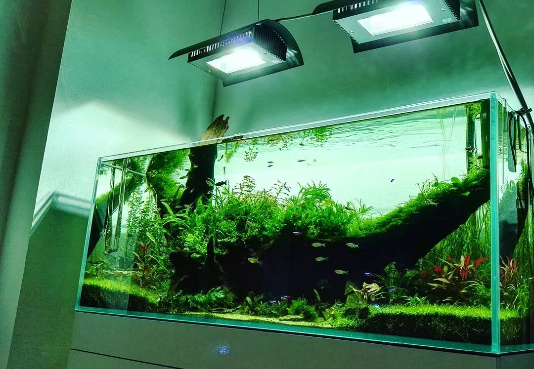 Akvárium optiwhite 120x45x45cm