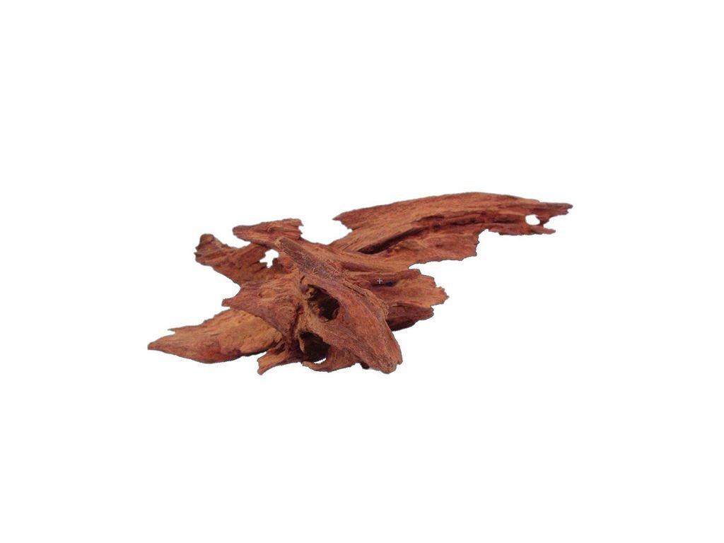 Kořen velikost 20 - 25 cm