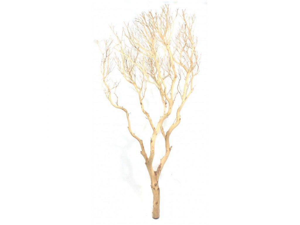 Kořen Drift Wood 1ks