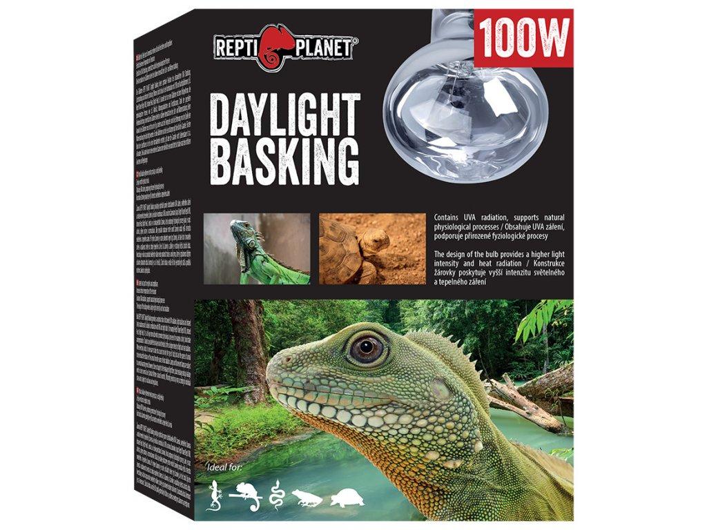 Repti Planet žárovka Daylight Basking Spot 100W