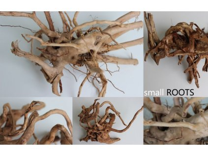 NANO Roots - 1kus