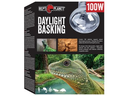 Repti Planet žárovka Daylight Basking Spot 100W