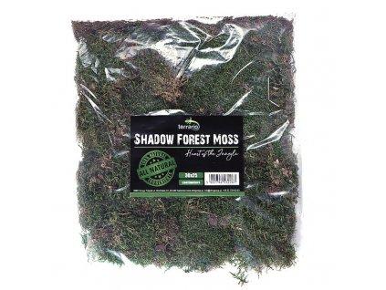 Terrario Shadow Forest Moss - mech přírodní 35x30cm