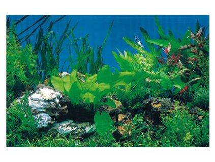 Akvarijní tapeta rostliny/černá 30cm (cena za 1bm)