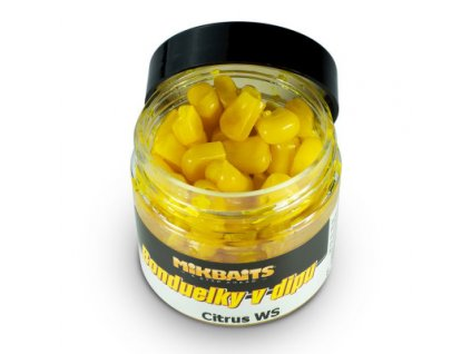 Bonduelky v dipu 50ml - Citrus WS
