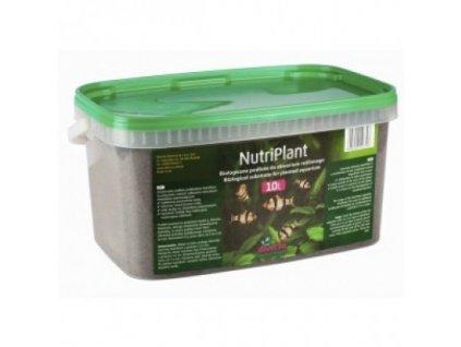 Diversa Nutriplant substrat 3l