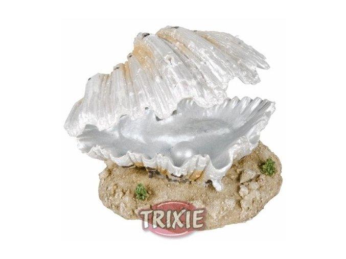 Otevřená mušle s perlou bílá 9 cm