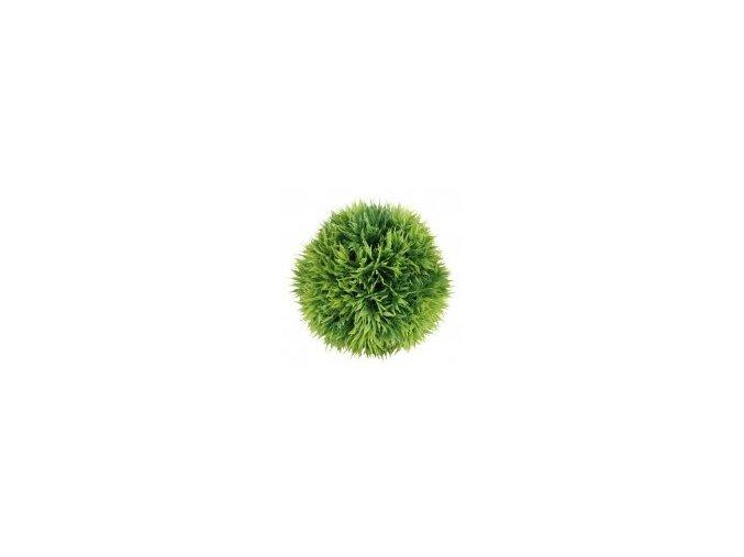 Dekorativní rostlina MECH 13cm