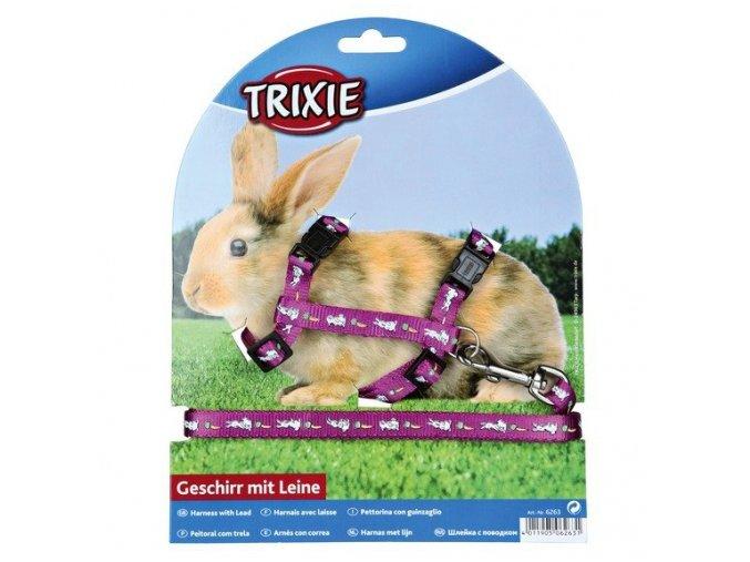 Postroj nylonový s vodítkem na králíka motiv 25-44/1cm,1,25m