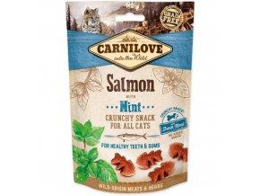 Carnilove salmon mint 50g