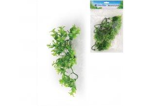Terarijní rostlina UH, vel.M UnionStar