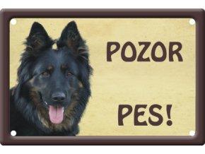 chodsky pes 1