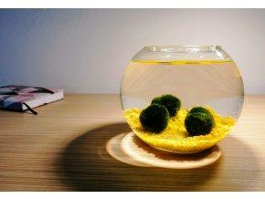 SET Řasokoule a akvarijní koule 2 l s žlutým štěrkem