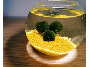 SET Řasokoule a akvarijní koule 0,8 l s žlutým štěrkem