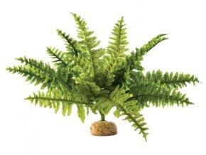 Rostlina EXO TERRA Boston Fern střední 29 cm
