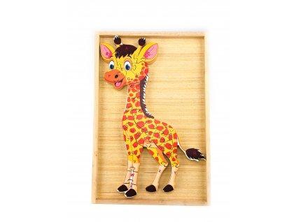 Vzdělávací puzzle - Žirafa