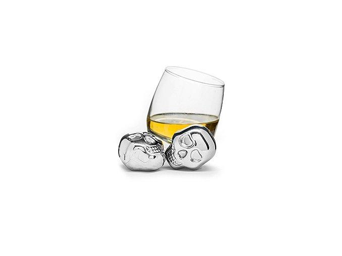 SAGAFORM Chladící kostky do nápojů Club, 2 ks
