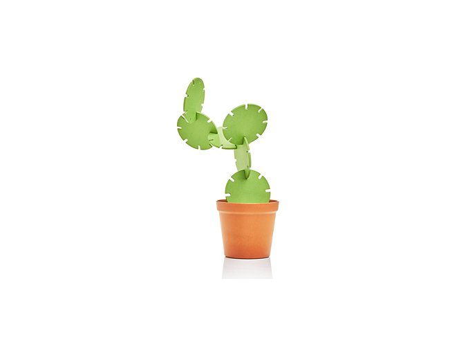 SUCK UK Stojánek s tácky Cactus Coasters
