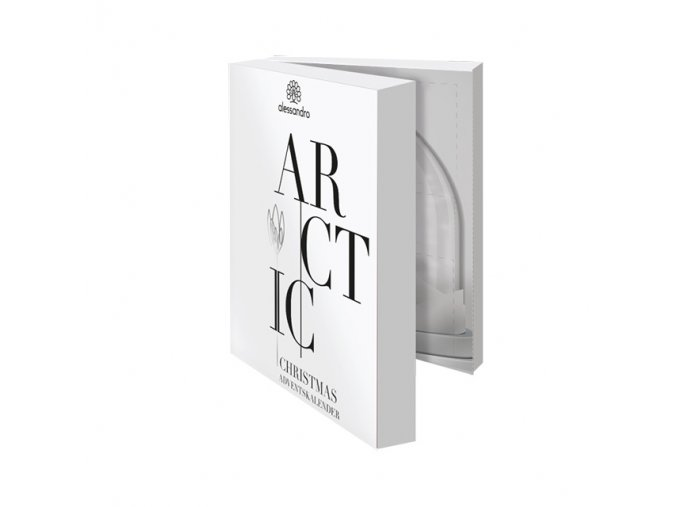 21 415 Adventskalender Standard Arctic
