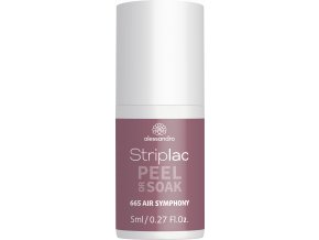 48 665 Striplac Fake AirSymphony VKR3 2020 ELEMENTS