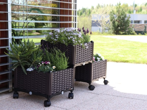 Se samozavlažovacími truhlíky rozkvete vaše terasa, balkon i lodžie