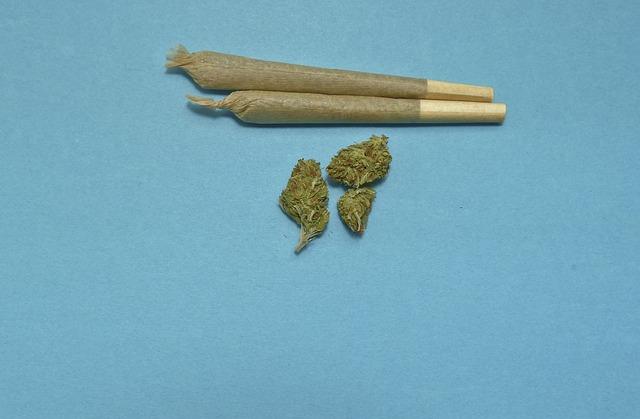 THC-marihuána vizsgálat