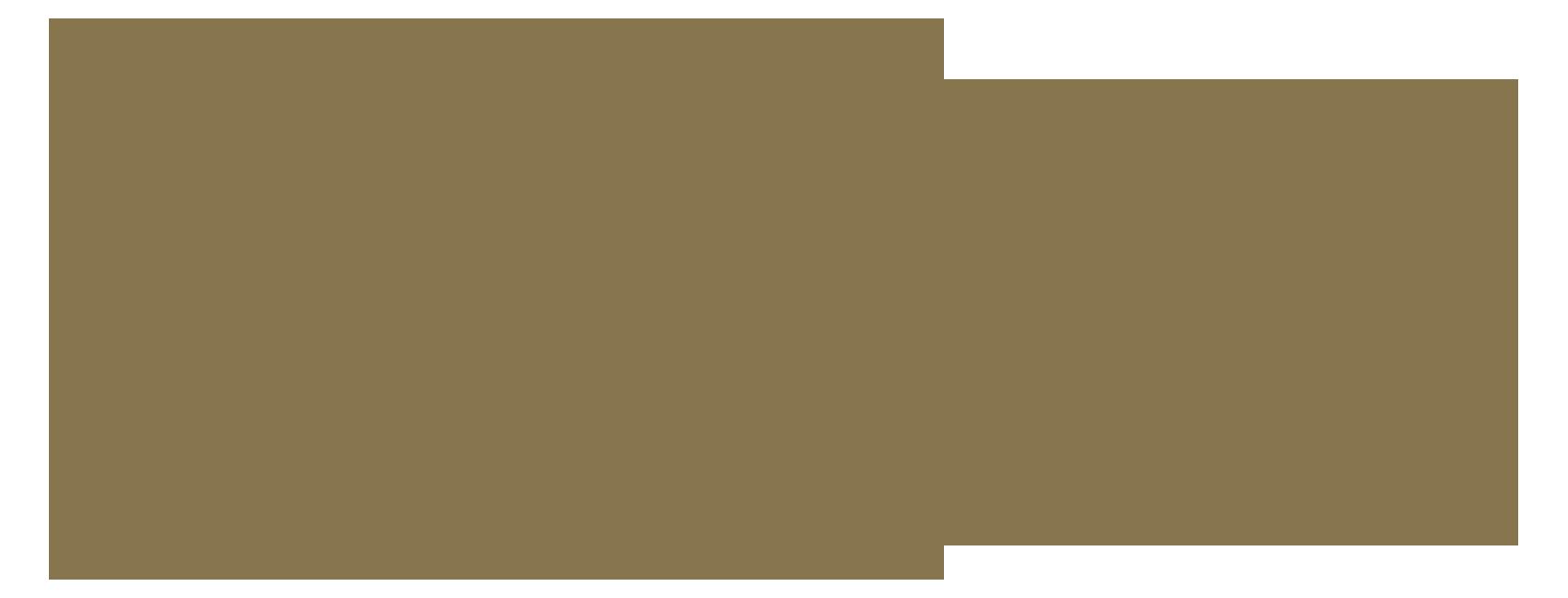 SERUM-rum&elixir-logo