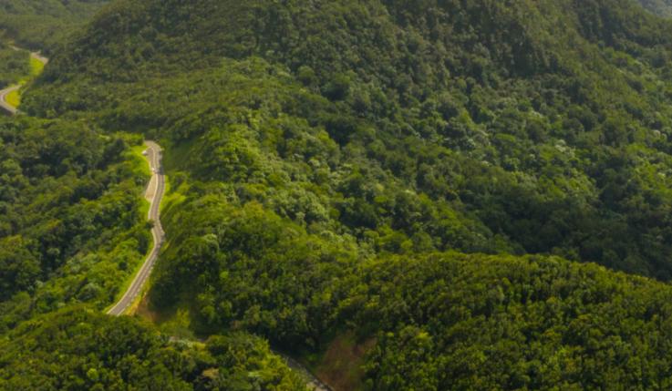 Čo je fond Impact on Biodiversity?