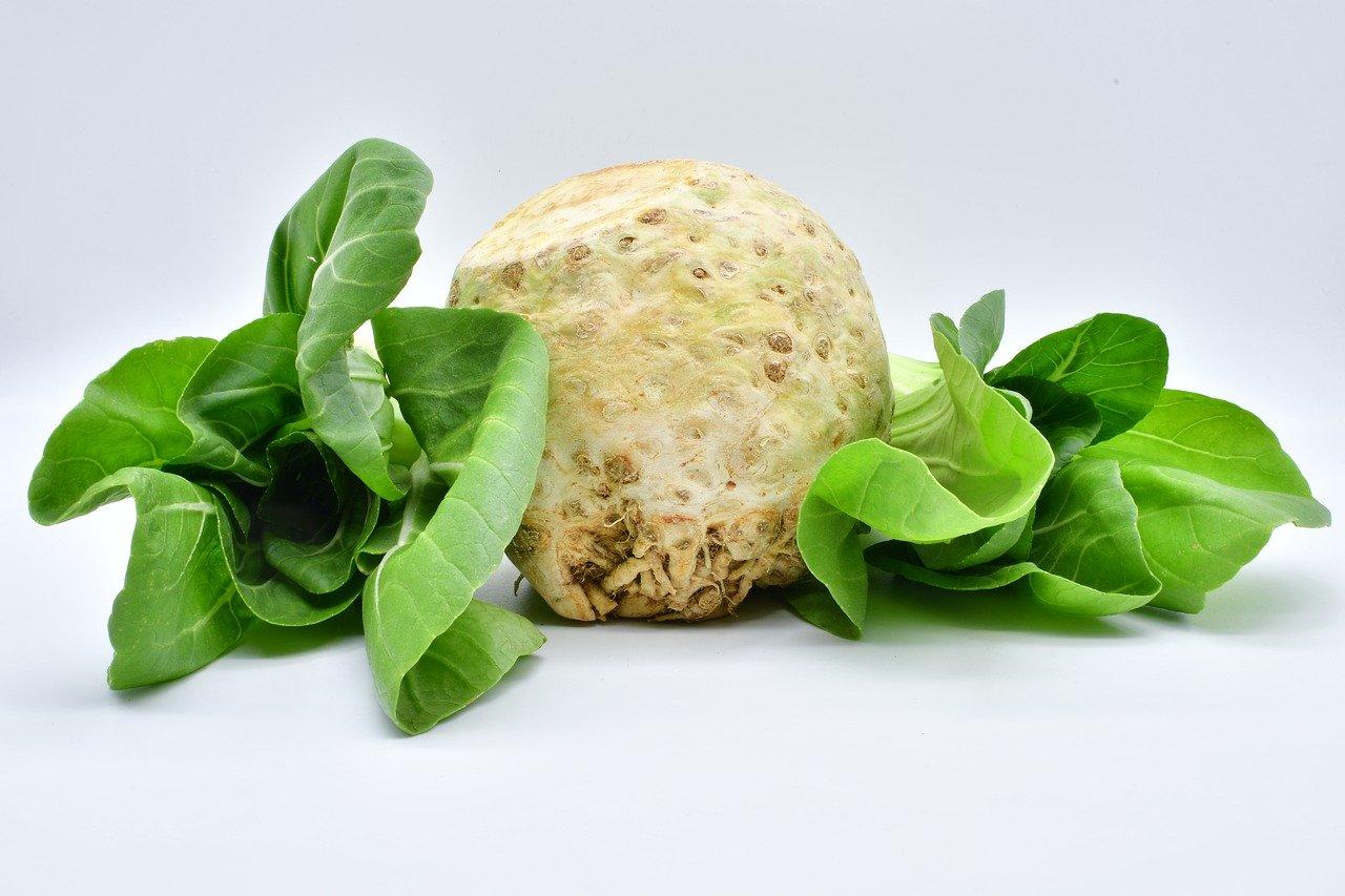 10 senzačných účinkov zeleru