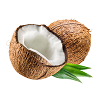 DuoLife Keratin kokosový olej
