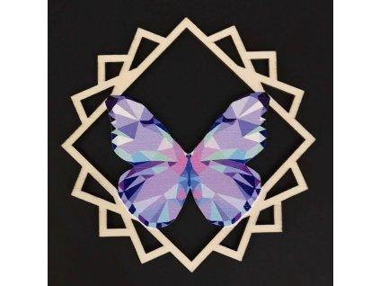 38606 Motýl fialový