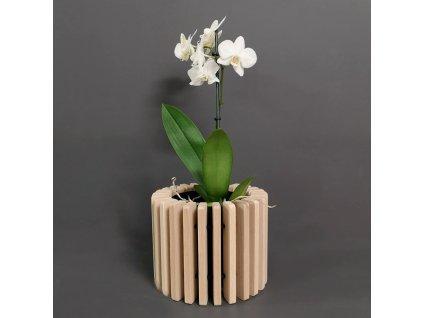 Dřevěný obal na květináč válec z masivního dřeva, 20 x 16 cm