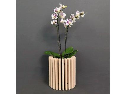 Dřevěný obal na květináč válec z masivního dřeva, 20 x 22 cm