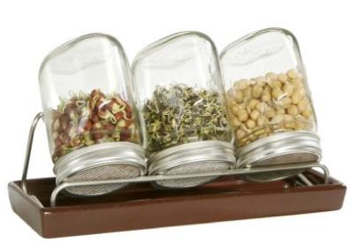 Nakličovací sklenice a semínka