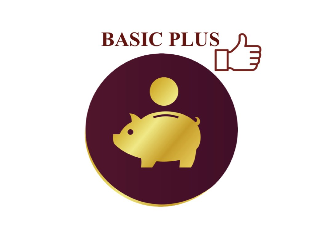 AH licence basic plus