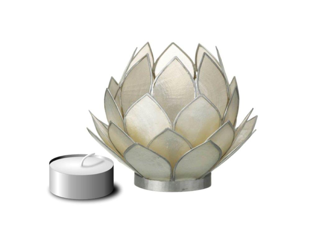 svícen lotus a