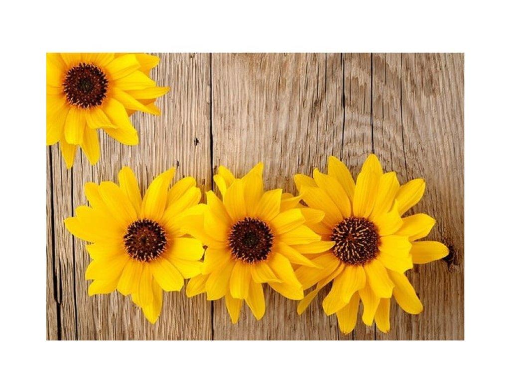 předložka slunečnice a