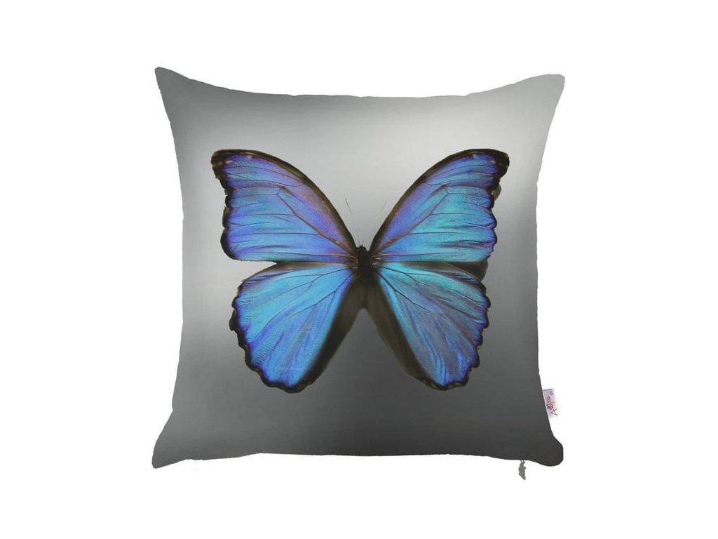 povlak motýl