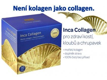 IC 1 kolagen