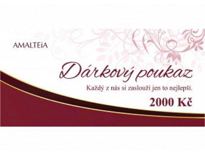DP 2000,