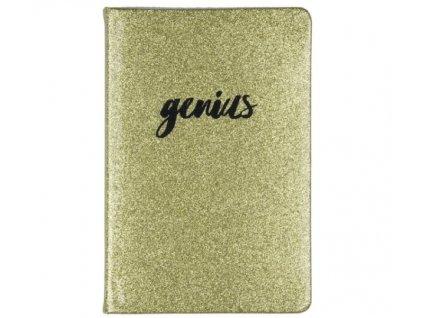zápisník TD genius a