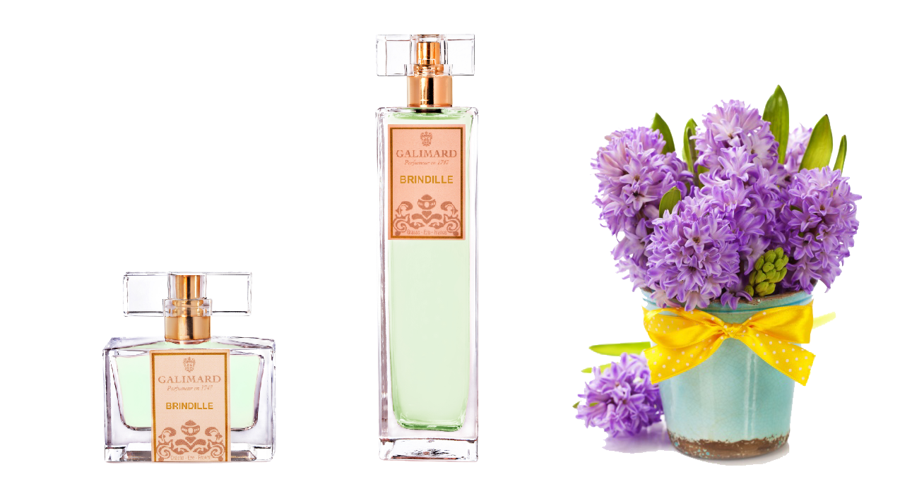Znáte 7 znaků niche parfémů?