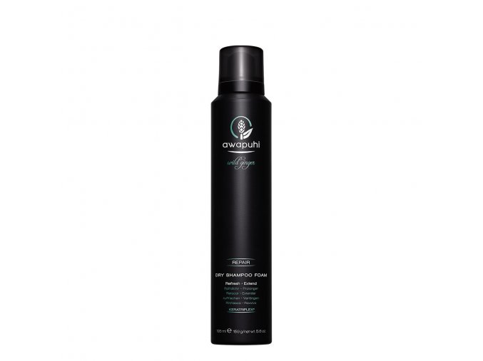 dry shampoo foam 5.6 oz 06895.1531766657